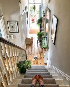 A light and bright hallway design with plenty of greenery and wall art. A light and bright hallway design with plenty of greenery and wall art. Painted Stairs, Wooden Stairs, Design Hotel, Interior House Colors, Interior Design, Interior Plants, Interior Ideas, Garden Plants, Indoor Plants