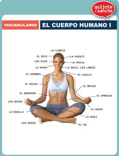 Cuerpo humano 1. http://quijotesancho.com/vocabulario-2/ Descarga:  http://quijotesancho.com/vocabulario/cuerpo_humano1.pdf