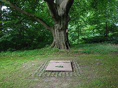 Karen Blixens grav under den store rødbøg ved foden af Ewalds Høj på Rungstedlund.