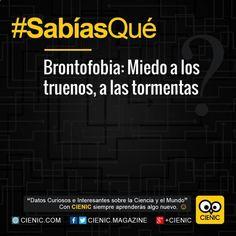 ☯ Conoce Notas Curiosas Ambientales, Noticias Curiosas De One Direction y Ecuador Tv Sabias Que aquí ➛ http://www.cienic.com/sabias-que-segun-estudios-la-testosterona-ayuda-los-hombres-ser-mas-honestos/