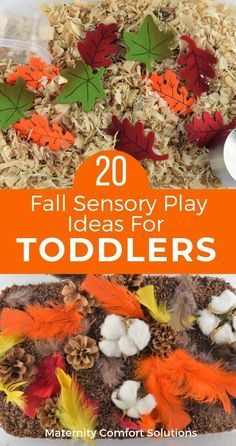 20 Fall Sensory Play Ideas For Toddlers! We put together some super simple fall sensory bin ideas for your toddlers and preschoolers.