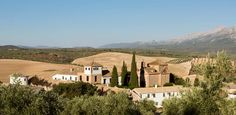 Experience the beauty of Andalusia in the best rural hotel of Granada. Beautiful rooms and pool, delicious food and scenic countryside – only half an hour from the Alhambra. Andalusia Spain, Granada, Countryside, Mansions, House Styles, Places, Outdoor, Beautiful, Outdoors