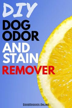 You don't have to spend a ton of money to fight the battle of pet stains and odors. You probably have some of the tools already. Check out these 3 DIY dog Odor and stain removers you can make at home. Dog Stains Happen Reality check. If you have a dog and you don't live …