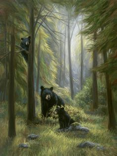 Spirits Of The Forest by Lucie Bilodeau Black Bear and Cubs Art Print Wall Décor Framed Picture: Professionally assembled in the USA! PLEASE NOTE: Actual colors may vary from those shown on your monitor. Bear Paintings, Bear Pictures, Bear Photos, Forest Art, Forest Mural, Wow Art, Bear Art, Wildlife Art, Black Bear