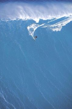 Surfers dream wave