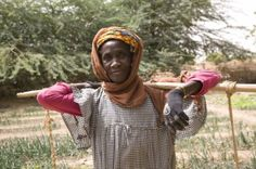 """""""Without the garden we would not be able to survive.""""– Maka Djibo"""