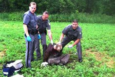 Police stand over David Sweat after he was shot and captured near the Canadian border Sunday in Constable, N.Y. Sweat is the second of two convicted murderers who staged a brazen escape three weeks ago from a maximum-security prison in northern New York. His capture came two days after his escape partner, Richard Matt, was shot and killed by authorities.