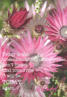 Today is the #InternationalDayOfHappiness. Don't forget that tomorrow, it will be TODAY again. Live happily! MiladyAinspires.