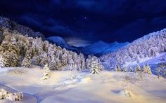 Imagem de winter, snow, and beautiful