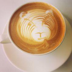 Truth Coffee Coffee Roasting, Coffee Cups, Latte, Concept, Glasses, Store, Eyewear, Coffee Mugs, Eyeglasses