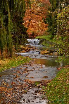 Pruhonicky Park by Denitsa Prodanova on 500px