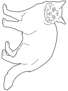 cat color pages printable bombay cat coloring page super coloring cats pic pinterest bombay cat cat colors and cat