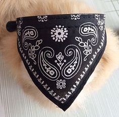 Adjustable Pet Dog Puppy Cat Neck Scarf Bandana Collar Neckerchief * Check out the image by visiting the link. (This is an affiliate link and I receive a commission for the sales)
