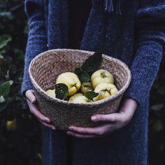 """A basket full of quinces - oh how we love this season "" Instagram Blog, Instagram Posts, Vegan Treats, Serving Bowls, Delish, Basket, Seasons, Homemade, Make It Yourself"