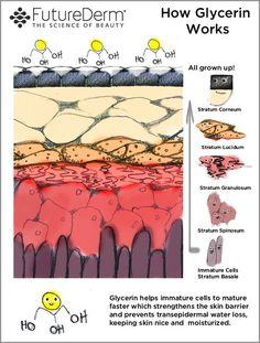 How Glycerin Works Beauty Balm, Beauty Skin, Aesthetic Dermatology, Beauty Vitamins, Anti Aging Treatments, In Cosmetics, Vegan Beauty, Facial Skin Care, Skin Tips