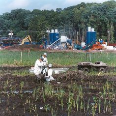 Wetland and marsh restoration by Sevenson at the Marathon Battery Superfund Site in Cold Spring, NY.