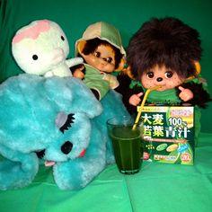 . @lovely_daisuke さんより #グリーンバトン を受けとりました バトンは初チャレンジだす 青味が強い気もするが(笑)緑わんこの上でまったりするカッパと中ちゃん 毎日欠かさずソース入り青汁をおいしそうに飲むソース派ソースくんです こんな感じでいいのかなぁ合ってますかねぇ . . . #ぬいぐるみ #さる #いぬ #わんこ #かっぱ #カッパ #モンチッチ モンチッチの偽物 #まごころの人形 #昭和レトロ #青汁 #緑 #グリーン #バトン #softtoy #toy #olddoll #retro #retoro #monchhichi #monkey #dog #cute #kawaii #green Snoopy, Fictional Characters