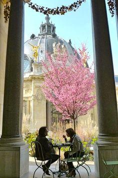 Le café du Petit Palais - Musée des Beaux-Arts de la ville de Paris - France -