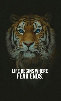 Top famous motivational words, Every day you will find motivational words. Our aim is to raise your self-esteem and self-motivation with our quotes. Tiger Quotes, Lion Quotes, Fear Quotes, Wolf Quotes, Reality Quotes, Animal Quotes, Attitude Quotes, Wisdom Quotes, Success Quotes