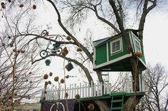 tree house vacay?! http://izismile.com/2009/02/18/tree_houses_31_pics.html