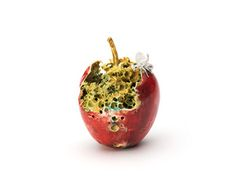 Unusual and delicate ceramic fruit sculptures by British artist Remon Jephcott. Represented by KMA, award-winning art gallery Brighton, UK. Fruit Photography, Still Life Photography, Rotten Fruit, Rotten Food, Decay Art, Fruit Sculptures, Growth And Decay, Earthenware Clay, A Level Art
