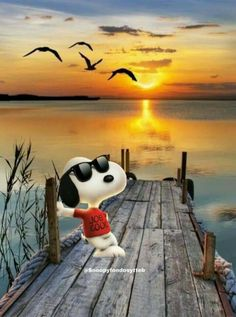 Gifs Snoopy, Snoopy Comics, Snoopy Images, Snoopy Pictures, Snoopy Quotes, Peanuts Cartoon, Cartoon Jokes, Peanuts Snoopy, Cartoons