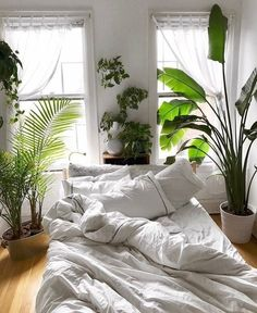 Bedroom Decor Fascinating Ideas On A Budget For Boho Bedroom With Plants And Textiles;Bohemian Bedroom Decor And Bedding Design Ideas We love this space themed bedroom ideas, a perfect fun learning in form of bedroom decoration for boys (and girls). Dream Bedroom, Home Bedroom, Bedroom Boys, Modern Bedroom, Nature Bedroom, Master Bedroom, Warm Bedroom, Small Bedrooms, Jungle Bedroom