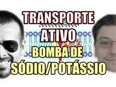 Vídeo Aula 107 - Biologia Celular - Transporte Ativo: Bomba de Sódio (Na...