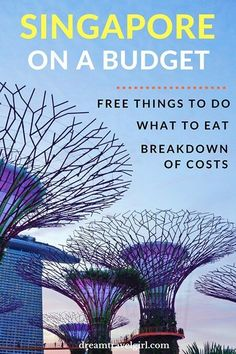 Singapore travel: Singapore on a budget is possible. In this guide you will find several free things to do, what to eat and where, and my detailed travel expenses. Travel in Asia. Solo Travel, Asia Travel, Travel Plane, Wanderlust, Borneo, Singapore Travel Tips, Singapore Itinerary, Singapore Guide, Singapore Trip
