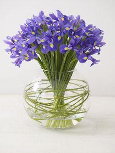 Iris- Summer Wedding Flowers – Saving Money on Seasonal Flowers