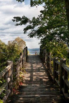Walk Way to Lake
