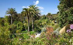 tresco abbey gardens, magical family friendly UK destination