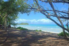 Marine Beach - Andros Island - Bahamas miss this place :(