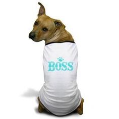 Boss In Teal Blue Dog T-Shirt