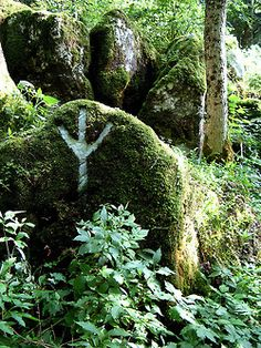 obviously, we wouldn't damage moss or lichen, but could create a temporary system of sigils || SamiSimbelmyne: Archive