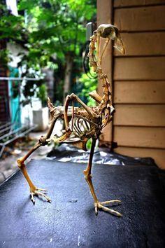 ChickenSculpture3