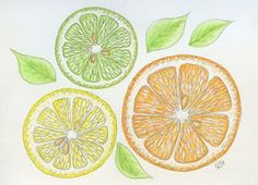 Rie Designed: A Sketch a Day-Day 168-Citrus