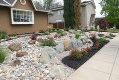 Low Water Front Yard Design   818 low water landscape Transitional Home Design Photos