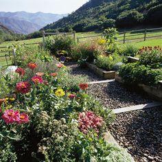 Colorado mountain garden