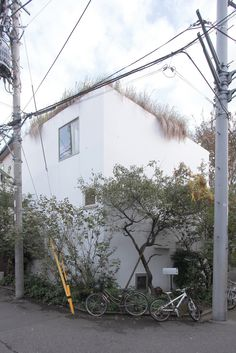 #green Kazuyo Sejima | house in a plum grove