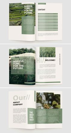 Booklet Design Layout, Page Layout Design, Presentation Layout, Graphic Design Layouts, Graphic Design Posters, Design Design, Magazine Page Layouts, Mise En Page Magazine, Magazine Layout Design