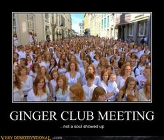 GINGER CLUB MEETING#Repin By:Pinterest++ for iPad#