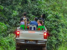 Orangutan and wildlife observation at Bukit Piton in Lahad Datu. This is a class forest reserve and is home to the Orang Utan and other Borneo wildlife Wildlife Safari, Orangutan, Borneo, How To Memorize Things, Adventure, Travel, Viajes, Orangutans, Destinations