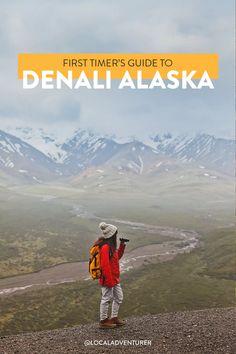 17 Unforgettable Things to Do in Denali National Park Alaska // Local Adventurer #denali #denalinationalpark #usa #alaska #localadventurer #findyourpark