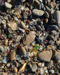 #getoutthere #adventure #outdoors #travel #backpacking #hiking #camping #overlanding #winter #pebbles #glass #ocean #rocks #photography #pic #macro #hd #picoftheday #nofilter #photo #wallpaper #background