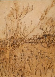 van Gogh, Vincent    Dutch, 1853-1890  Orchard with Arles in the Background, 1888  Ink over graphite on paper, 21 x 15 3/8 in.  The Hyde Collection, Glens Falls, New York, 1971.81  Photograph by Joseph Levy