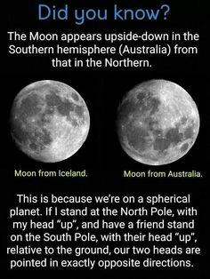 Moon: Did you know. - Ewww Meme - Moon: Did you know. The post Moon: Did you know. appeared first on Gag Dad. Astronomy Facts, Space And Astronomy, Astronomy Quotes, Astronomy Tattoo, Astronomy Science, Astronomy Pictures, Cosmos, Carl Sagan, The More You Know