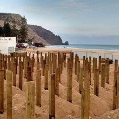 a sea of stakes in praia da luz ;)