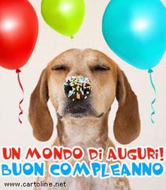 Un+mondo+di+auguri Birthday Wishes, Happy Birthday, Italian Greetings, Anniversary Congratulations, Birthdays, Happy Birthday Beautiful, Pictures, Smile, Rook