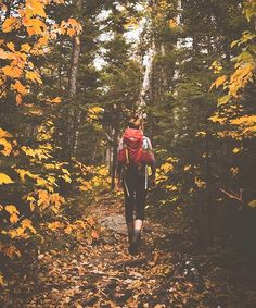 "464 Likes, 7 Comments - Freedom Rise | Art + Apparel (@freedomrise) on Instagram: ""It's officially Fall! ☀️What autumn Adventures do you guys have planned?! . PC: @sethgme with…"""